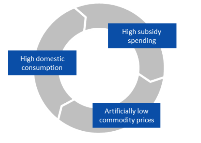 Rising subsidy spending creates a vicious cycle that threatens to crowd out spending on priority sectors